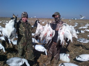 Spring Snow Goose - Mound City, Missouri - 402-304-1192